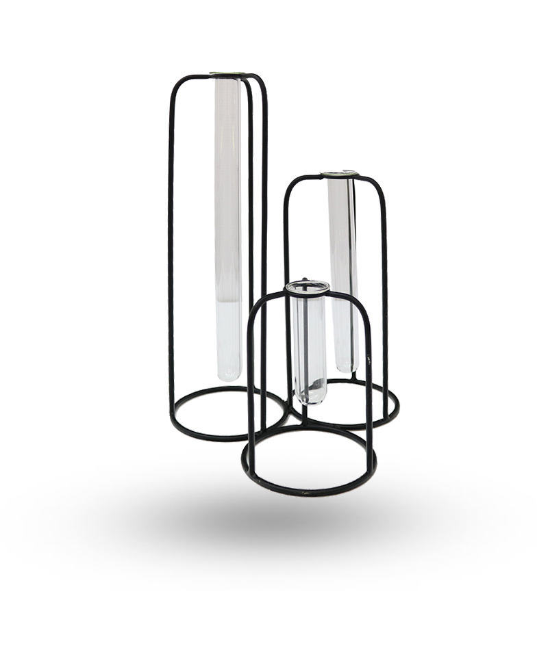 Delphine 3 Test Tube Vase
